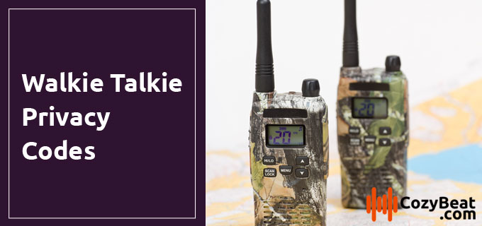 Walkie Talkie Privacy Codes